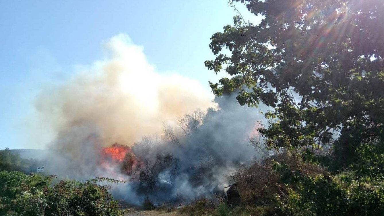 Foto: Incendio en Roses (Girona). (Agentes Rurales de Cataluña)