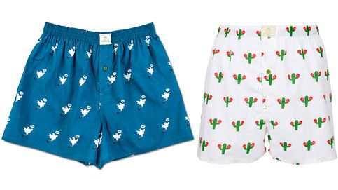 The Cool Cactus: calzoncillos unisex