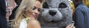 Foto: Pamela Anderson sobre el don Juan Carlos: Su comportamiento no es en absoluto sexy