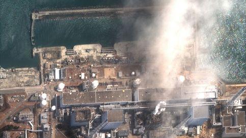 La producción agrícola vuelve a Fukushima 9 años después de la catástrofe nuclear