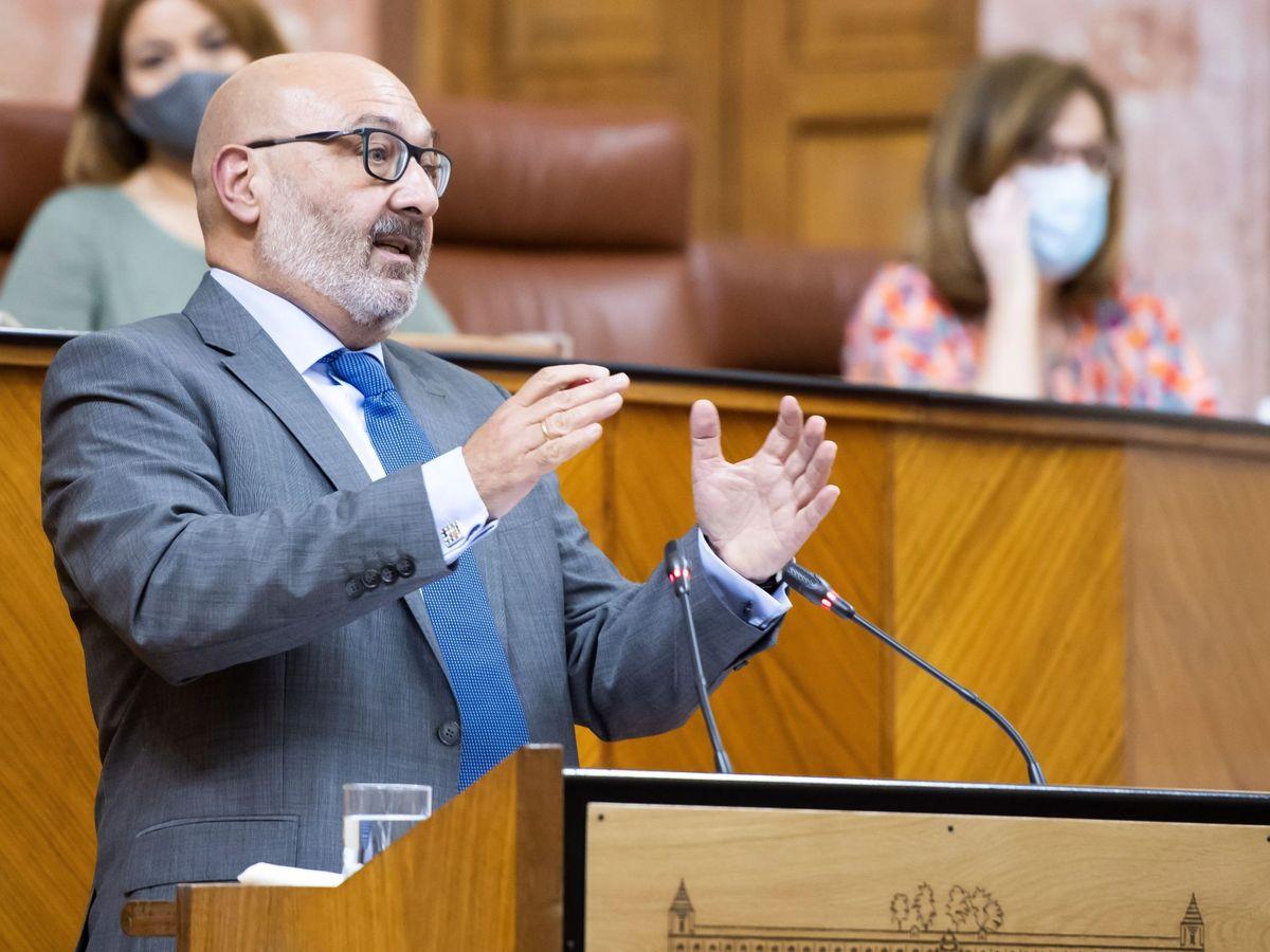 Foto: El portavoz parlamentario andaluz de Vox, Alejandro Hernández. (EFE)