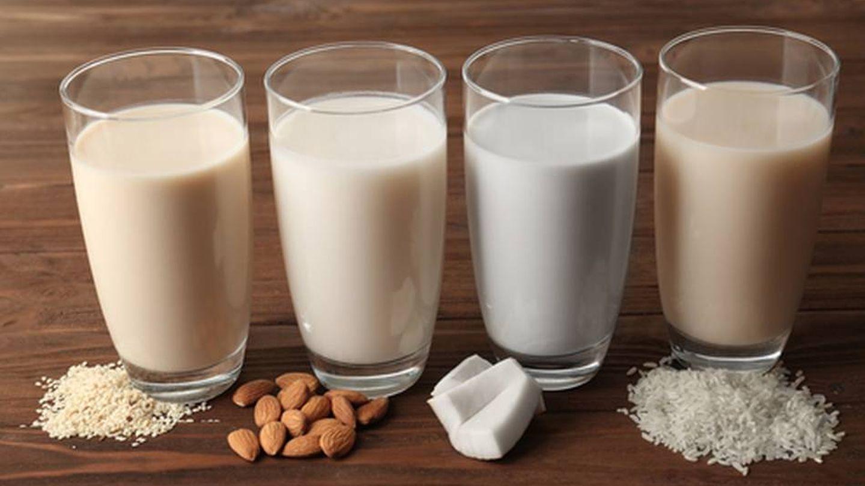 Bebidas vegetales tipo lácteos: arroz, almendra, coco y soja.