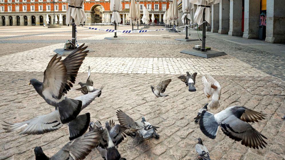 Foto: Las terrazas de los bares y restaurantes de la plaza Mayor de Madrid, el pasado miércoles. (EFE)