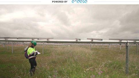 Extremadura bulle con la energía solar