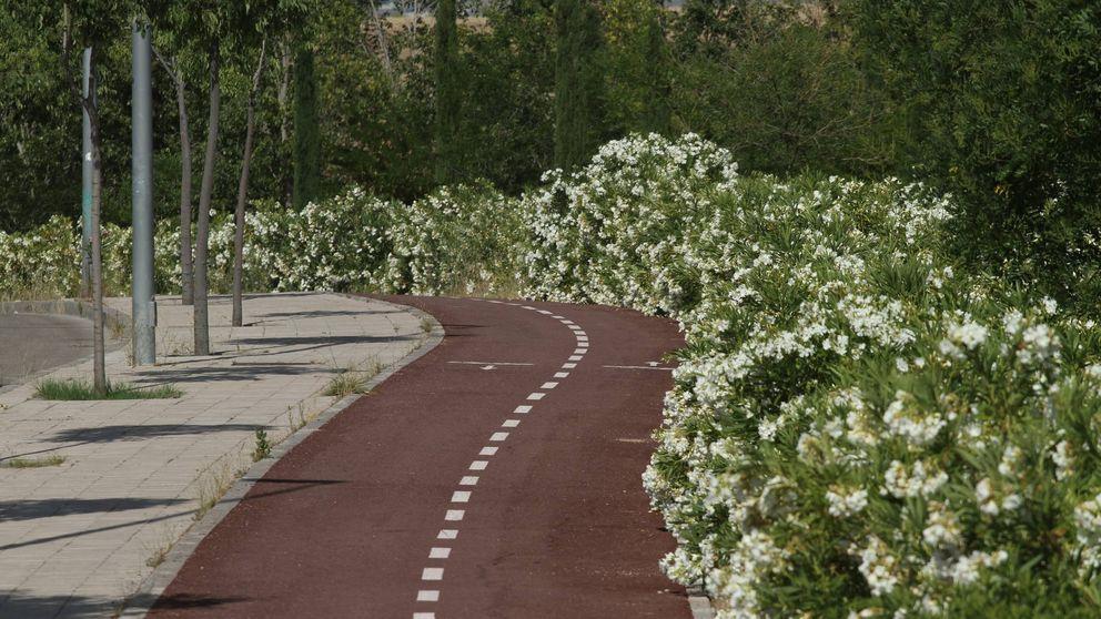 Concienciación y respeto mutuo entre conductores, ciclistas y peatones
