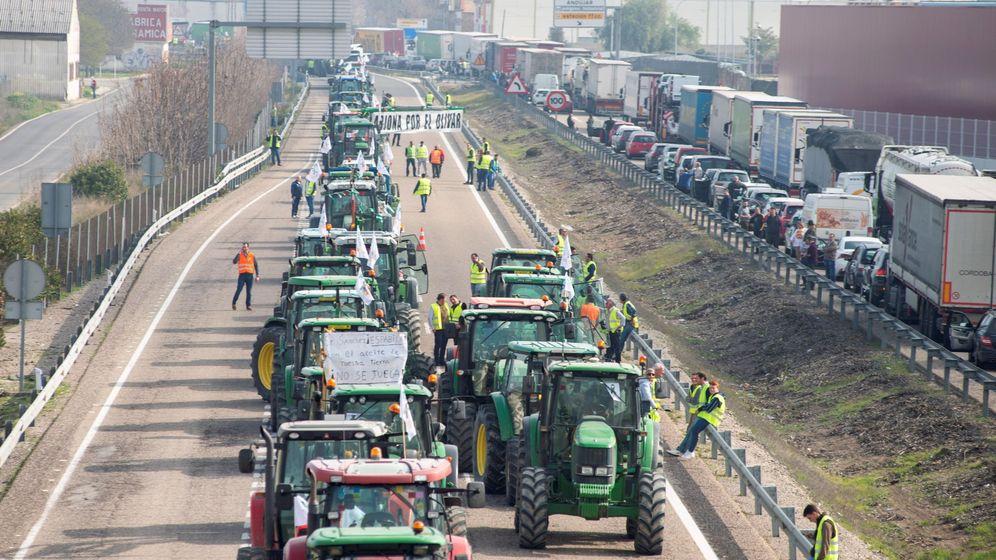 Foto: Caravana de tractores de los olivareros en Jaén, en una foto de archivo (EFE)