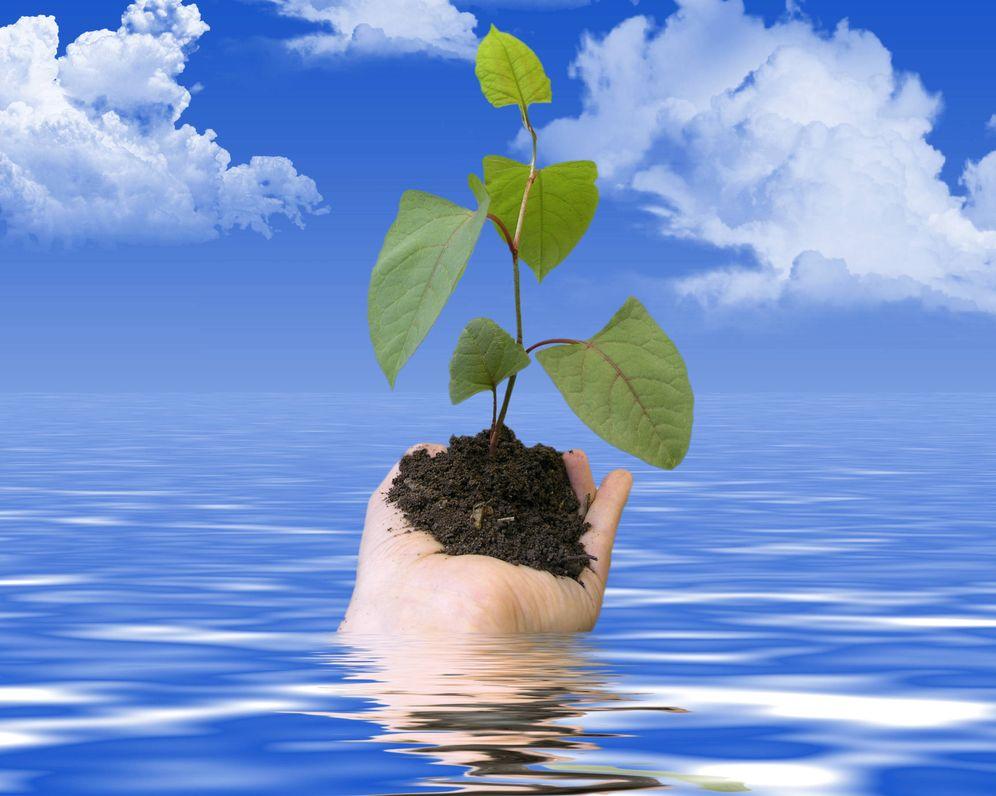 Foto: En nuestras manos está salvar el planeta (Foto: Gtres).