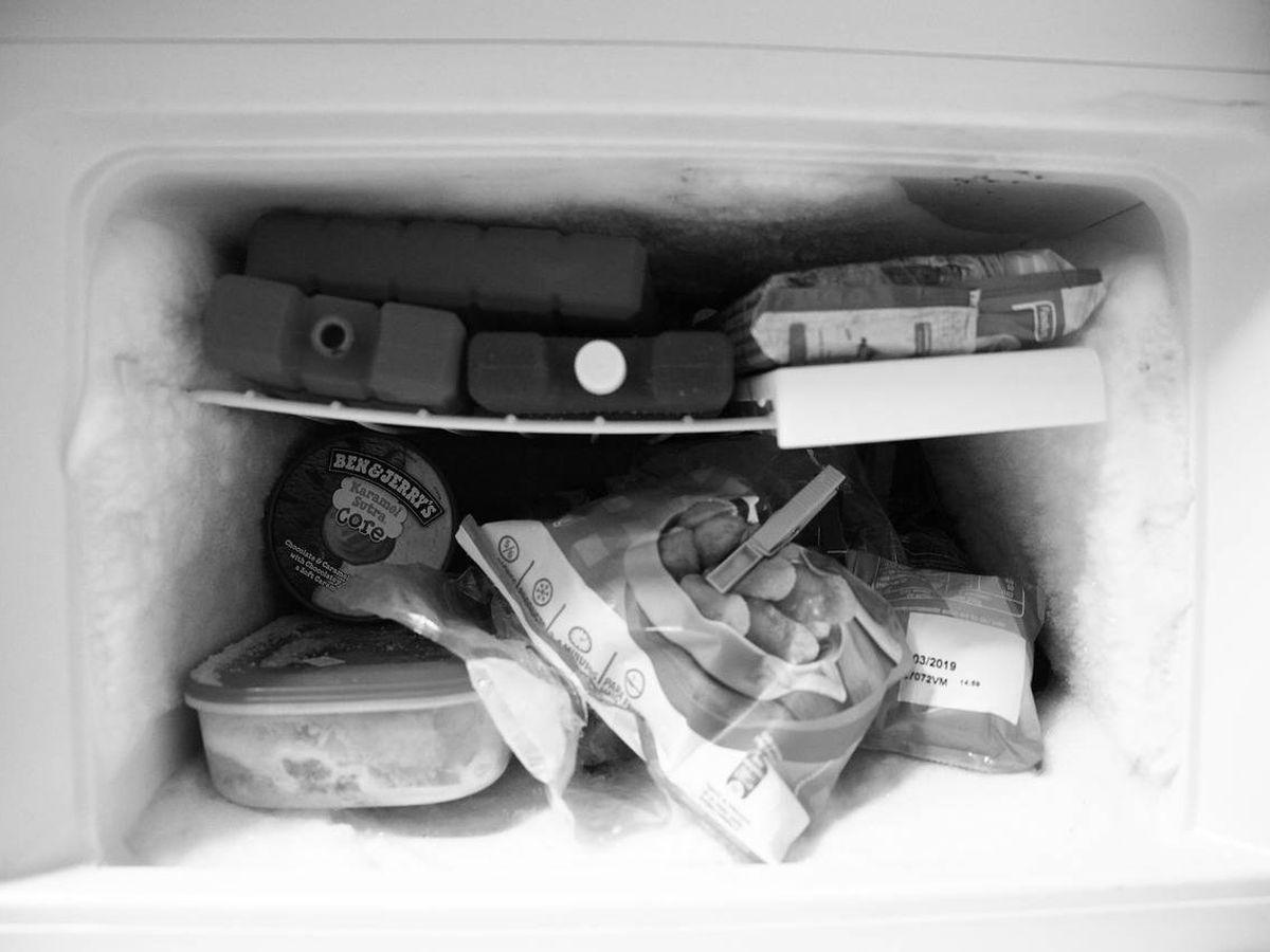 Foto: Almacena tu comida fácilmente en un congelador pequeño (Foto: Pixabay)