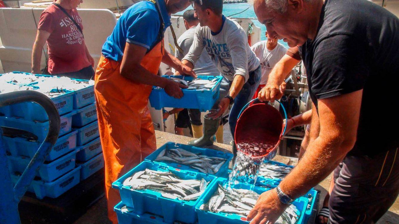 Marruecos abre la guerra del pescado contra Ceuta: Los peces son mercancía prohibida