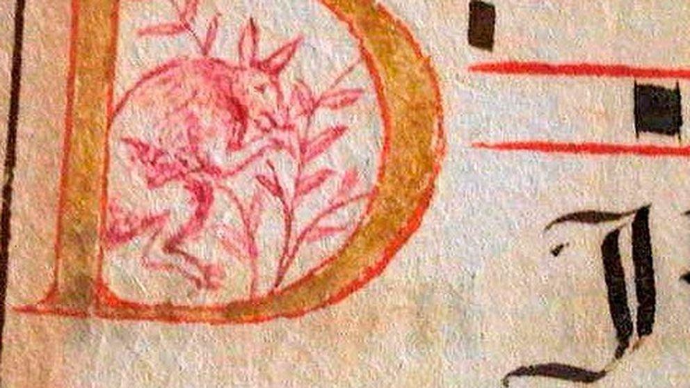 El canguro dibujado en un codex  del XVI que cambia la Historia