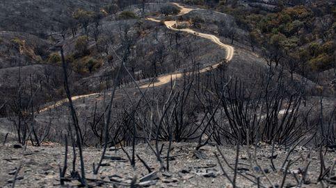 Cambio climático, comodín de desastres