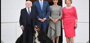 Post de Meghan Markle en Dublín con look de más de 5.000 euros y rodeada de mascotas