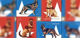 Post de Los perros militares que salvan vidas tendrán su propia colección de sellos