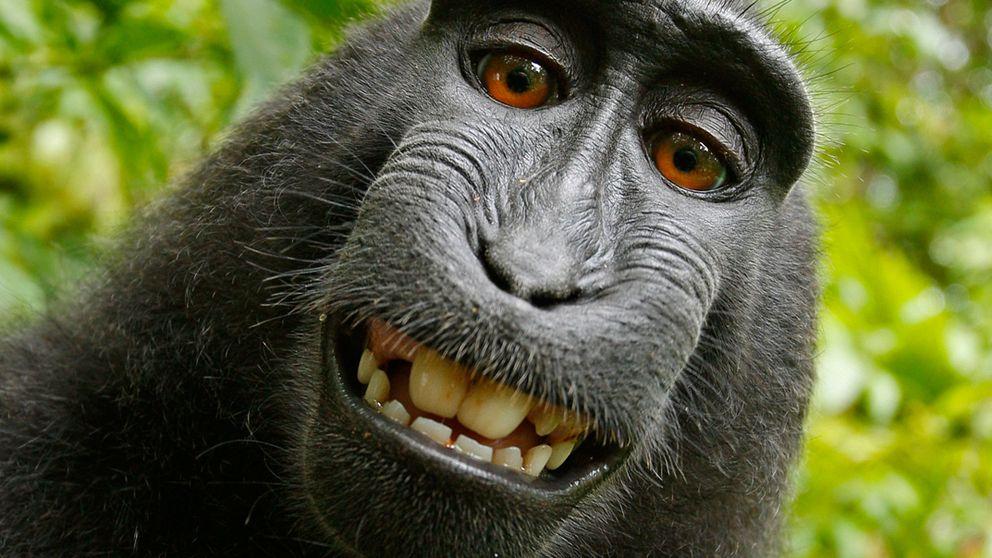 El 'selfie' más polémico de la Historia