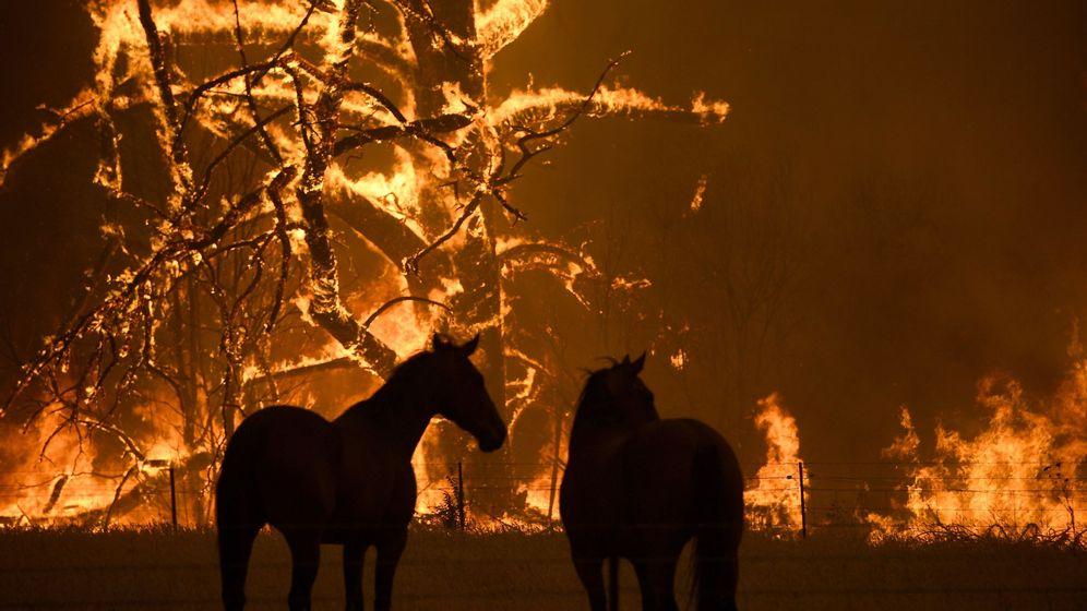 Foto: Imagen de uno de los incendios que ha sufrido Australia. Foto: EFE Dan Himbrechts
