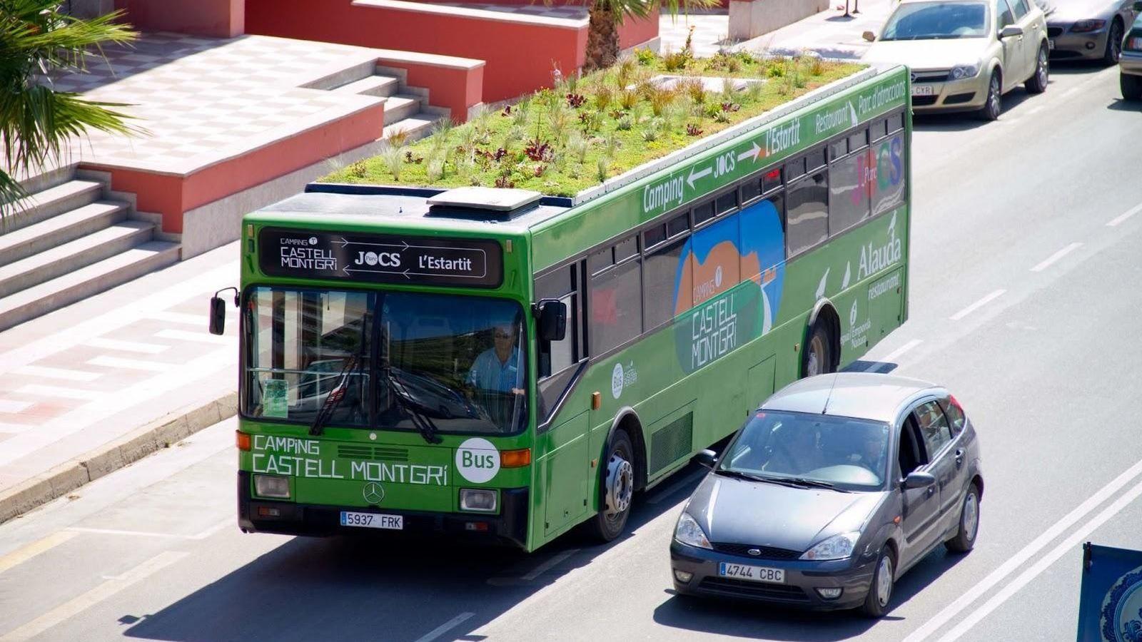 Resultado de imagen de autobus y coche