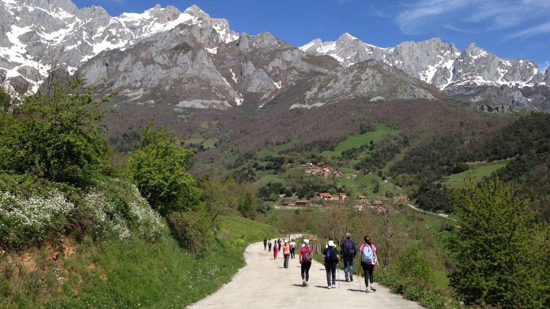 Peregrinos por el Camino Lebaniego con los Picos de Europa como telón de fondo (Turismo de Cantabria)