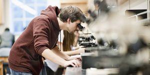 Foto: El profesor ideal verá la enseñanza como un obstáculo para su carrera