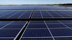 Solarpack saldrá a bolsa a precio de 8,3 euros por acción