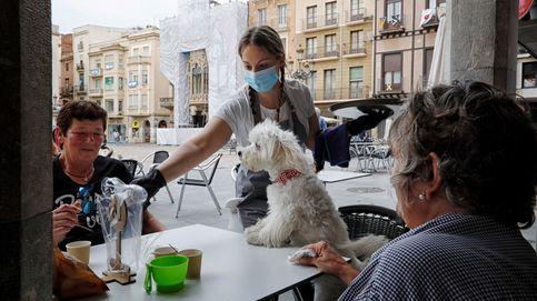 Las muertes por coronavirus superan las 27.000 tras sumar 184 en 24 horas