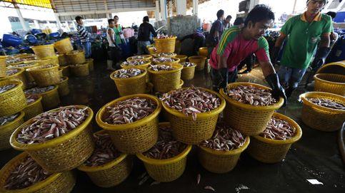 El marisco tailandés que tú comes lo pescan esclavos