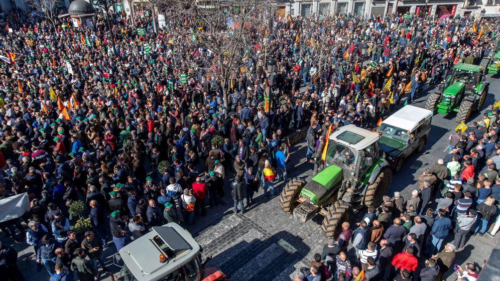 Foto: Agricultores claman por una ley que garantice precios justos para los productos agroalimentarios. (EFE)