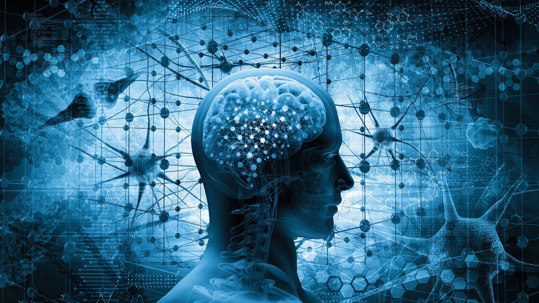 ¿Crees que eres más inteligente que los demás? Seis detalles que lo indican