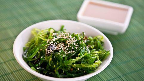 Las algas más comunes que podemos encontrar y sus recetas