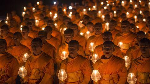 Monjes budistas por la paz mundial y una nueva especie en Ecuador: el día en fotos