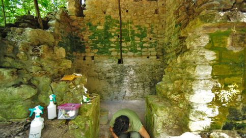 Descubierto en Yucatán un enorme palacio que ocupó la élite maya