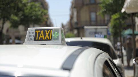 Condenado un taxista por denegar servicio a un invidente acompañado de su perro guía