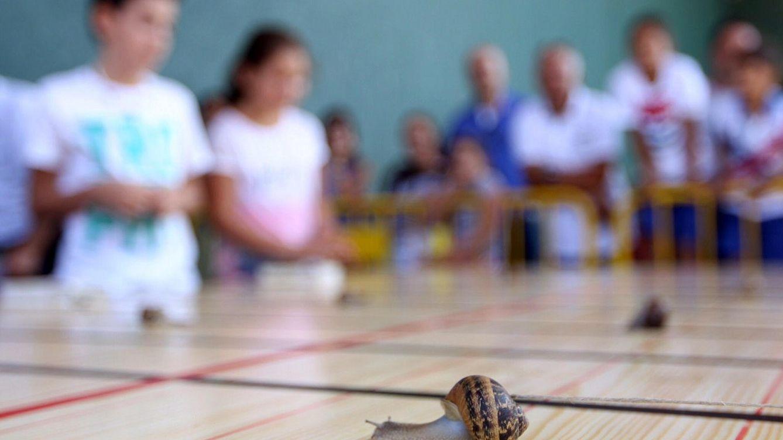 Pepo, de un niño de cuatro años, gana la Carrera de Caracoles de Tricio