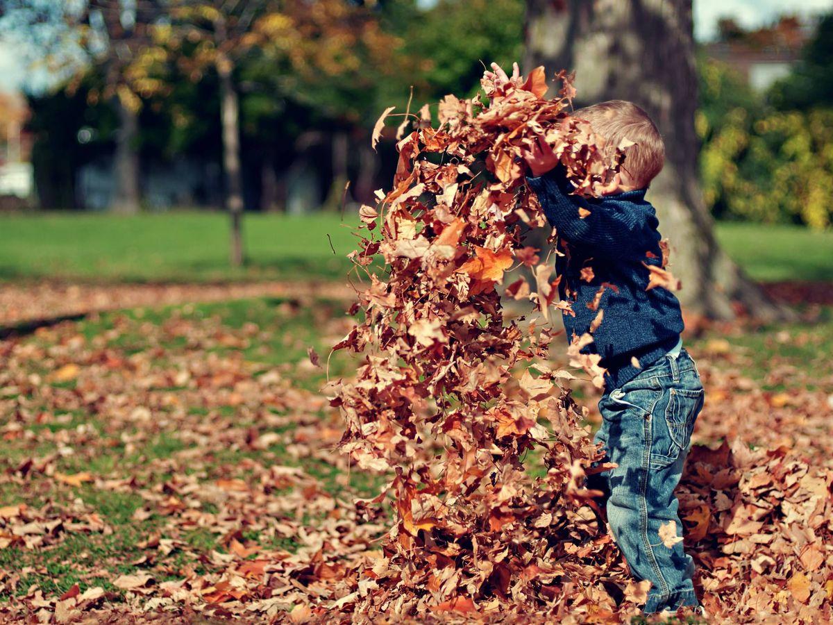 Foto: Planes con niños para hacer gratis al aire libre este otoño. (Scott Webb para Unsplash)