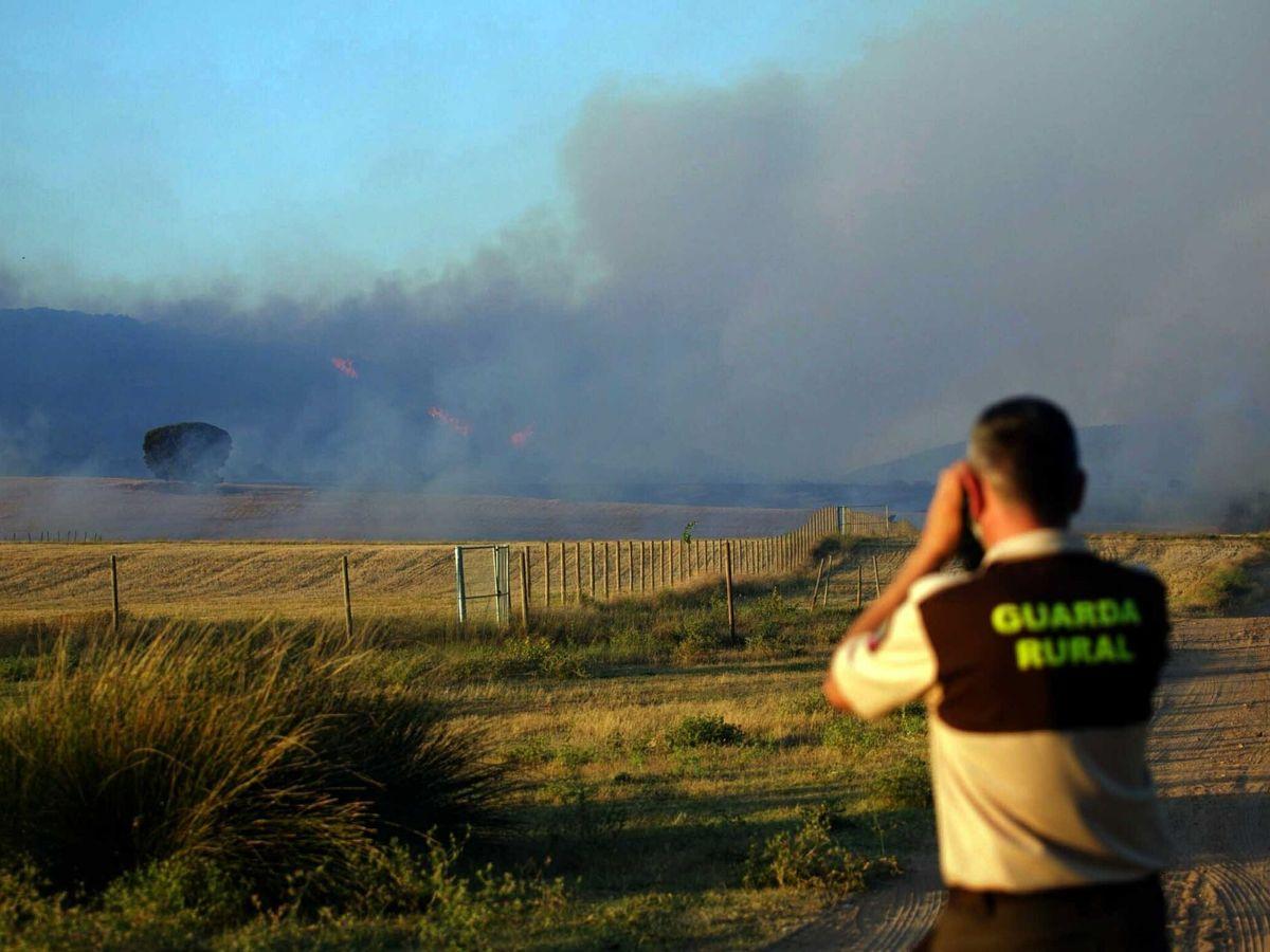 Foto: Incendio forestal. (EFE)
