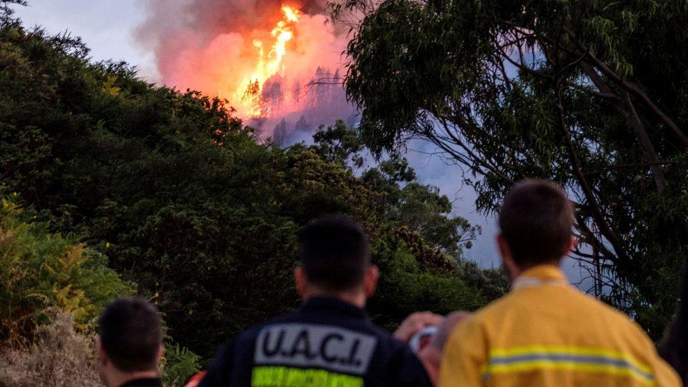 Un cable de alta tensión, principal hipótesis del gran incendio de Gran Canaria