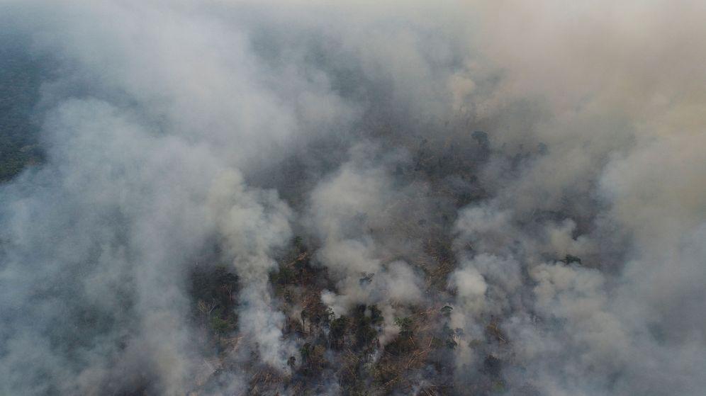 Foto: El pulmón del planeta no deja de arder (Reuters/Ueslei Marcelino)
