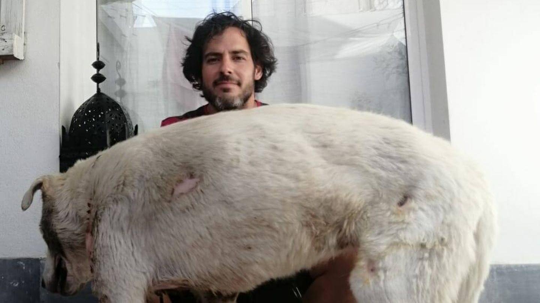 Borja Guindo junto a Nube, muy mejorada de las lesiones. (EC)