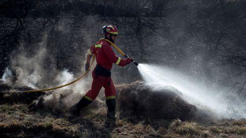 Los incendios forestales queman 500 hectáreas en Galicia, la mayoría en Lugo