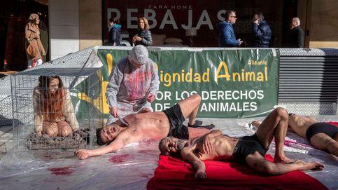Nieve en Cachemira y protestas en Colombia: el día en fotos