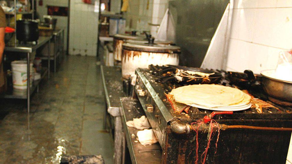Ratas en la nevera y cucarachas en el arroz: confesiones de una inspectora de Sanidad