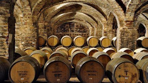 Maridajes vino a vino: tintos a menos de 10 euros. I parte