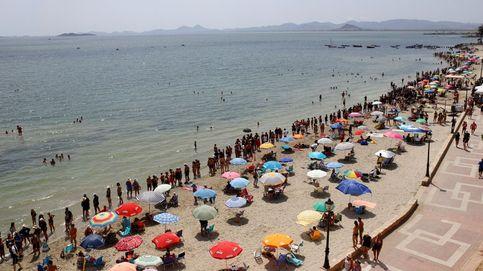 Sopa verde en el Mar Menor: la agricultura intensiva es su principal causa
