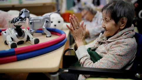 Robots para paliar la soledad de los más ancianos