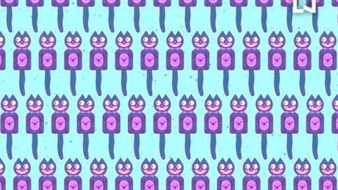 El reto viral del gato que arrasa en redes: ¿eres capaz de resolverlo en 10 segundos?