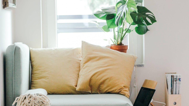 Las rebajas son la ocasión ideal para renovar tu casa. (Brina Blum-Unsplash)