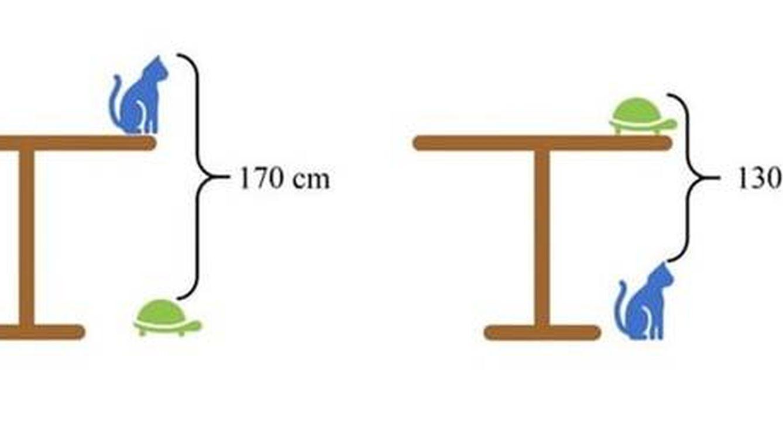 Foto: El problema matemático que está dando quebraderos de cabeza. (Youtube)