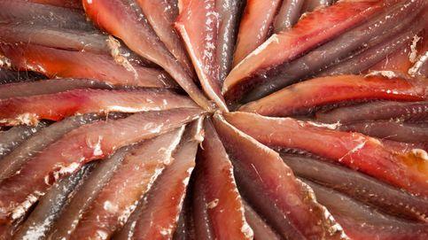 No todas las anchoas son iguales, aprende a elegir las mejores