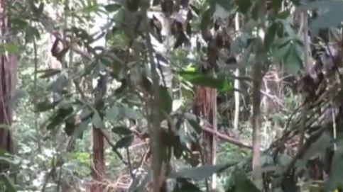 Graban a una tribu completamente aislada en la selva amazónica