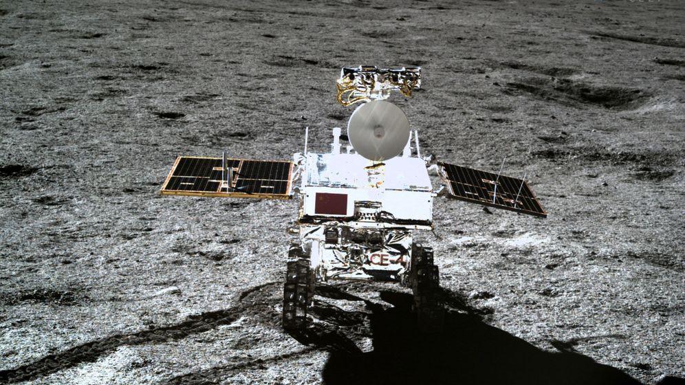 China logra que una semilla de algodón brote en la superficie de la Luna