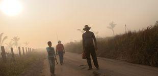 Post de Brasil detiene a tres sospechosos de provocar incendios en la Amazonia